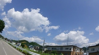 SHIM0481.jpg